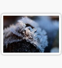 Ice Crystals Sticker