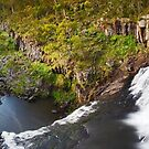 Ebor Falls, Guy Fawkes River National Park, New South Wales, Australia by Michael Boniwell