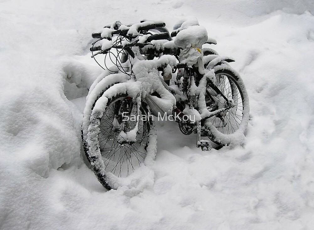 Three Bicycles by Sarah McKoy