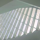 Milwaukee Art Museum II by paulineca