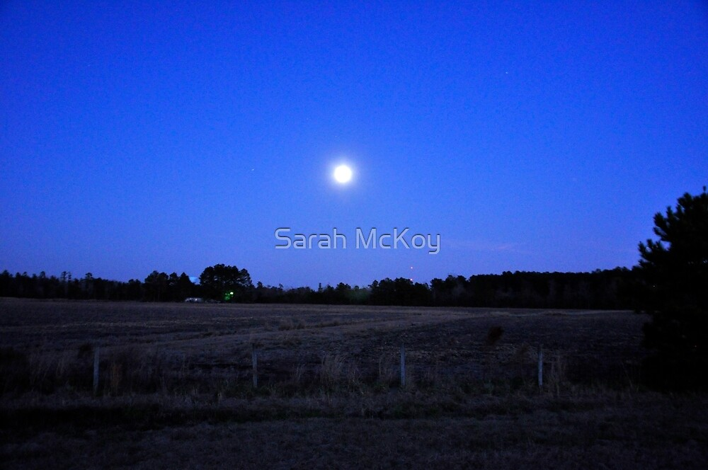 Moon over Winter Field by Sarah McKoy