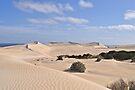 Gunyah Sand Dunes by Ian Berry