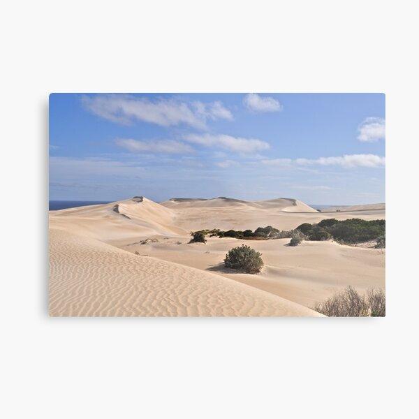 Gunyah Sand Dunes Metal Print