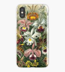 Orchidae - A lithographic color plate from Ernst Haeckel's Kunstformen der Natur of  iPhone Case/Skin
