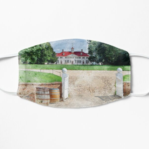 Mount Vernon Watercolor Mask