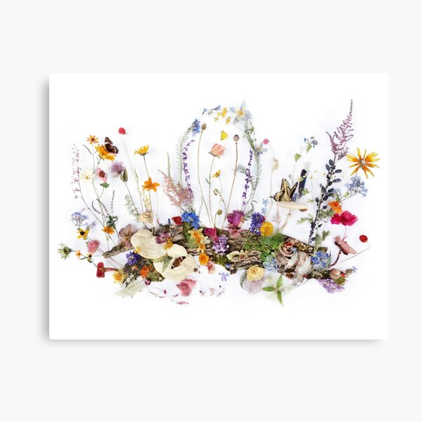 A Moment in Nature Canvas Print