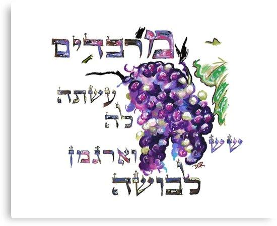 A Virtuous Woman - Eshet Chayil - Mishlei 31:22 by Douglas Rickard
