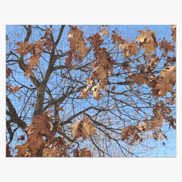 Dry autumn leaves on the tree Jigsaw Puzzle