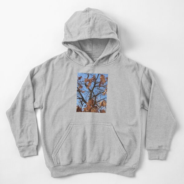 Dry autumn leaves on the tree Kids Pullover Hoodie
