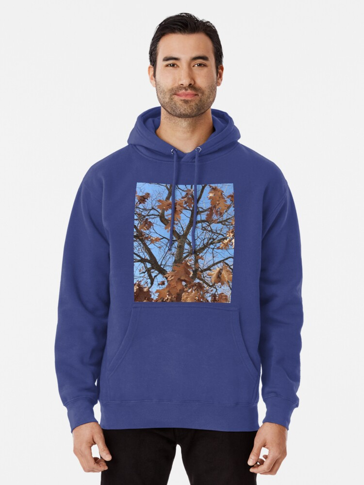 Alternate view of Dry autumn leaves on the tree Pullover Hoodie