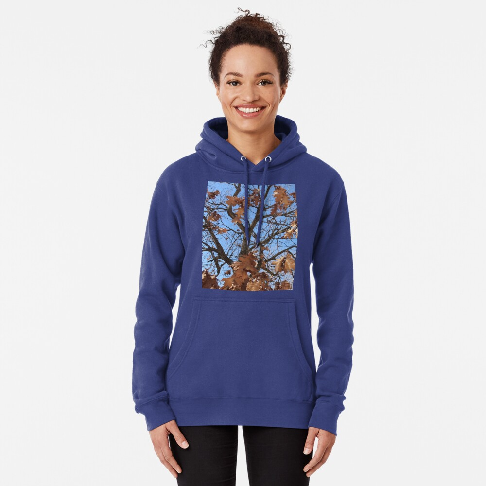 Dry autumn leaves on the tree Pullover Hoodie