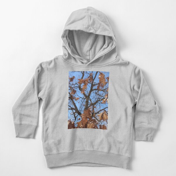 Dry autumn leaves on the tree Toddler Pullover Hoodie