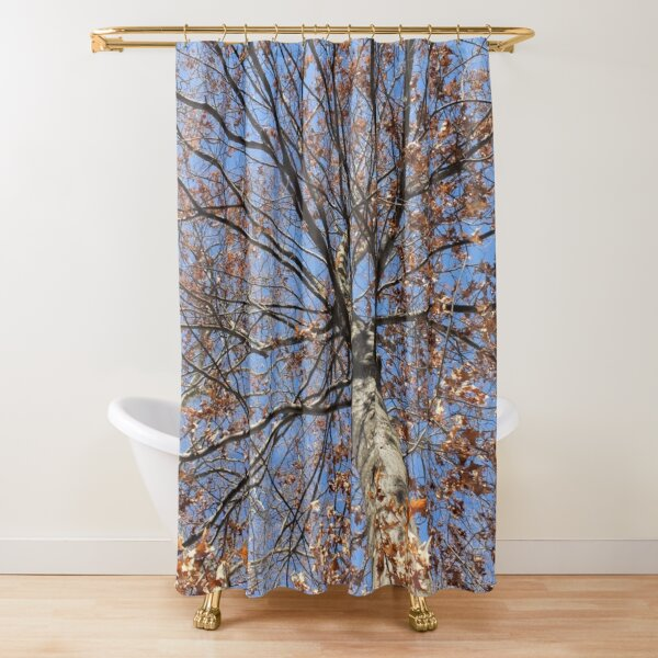 Dry autumn leaves on the tree Shower Curtain