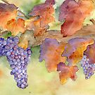 Fall Grape Harvest by Diane Hall