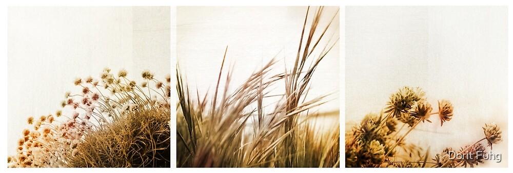 adagio (triptych) by Dorit Fuhg
