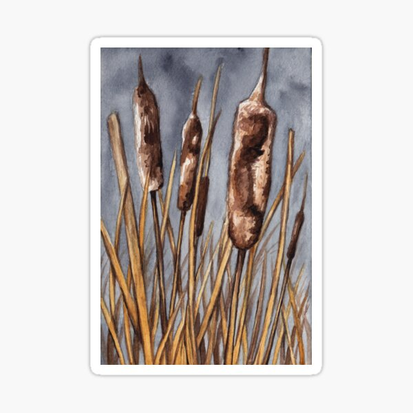 November Cattails Sticker