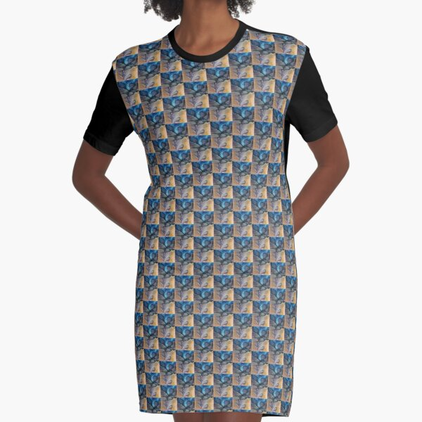 Arches Graphic T-Shirt Dress
