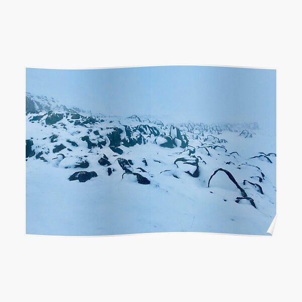 Frozen feet. Poster