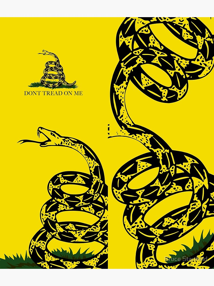 Gadsden Don't Tread On Me Flag by Bruiserstang