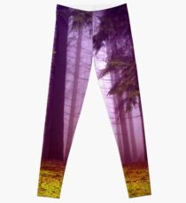 fog Leggings