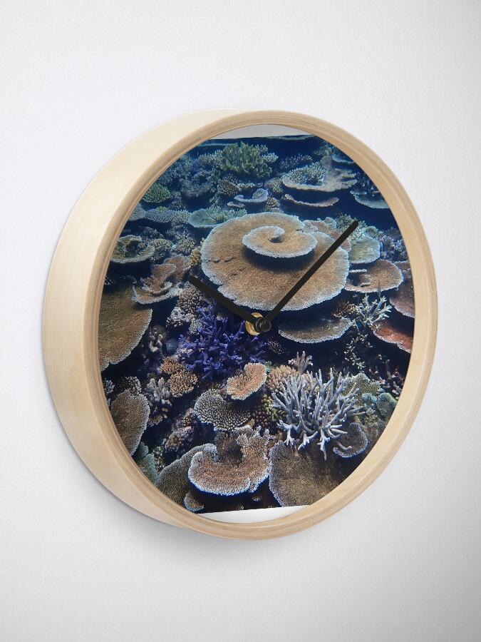 Alternate view of Bandjin Reefs III Clock