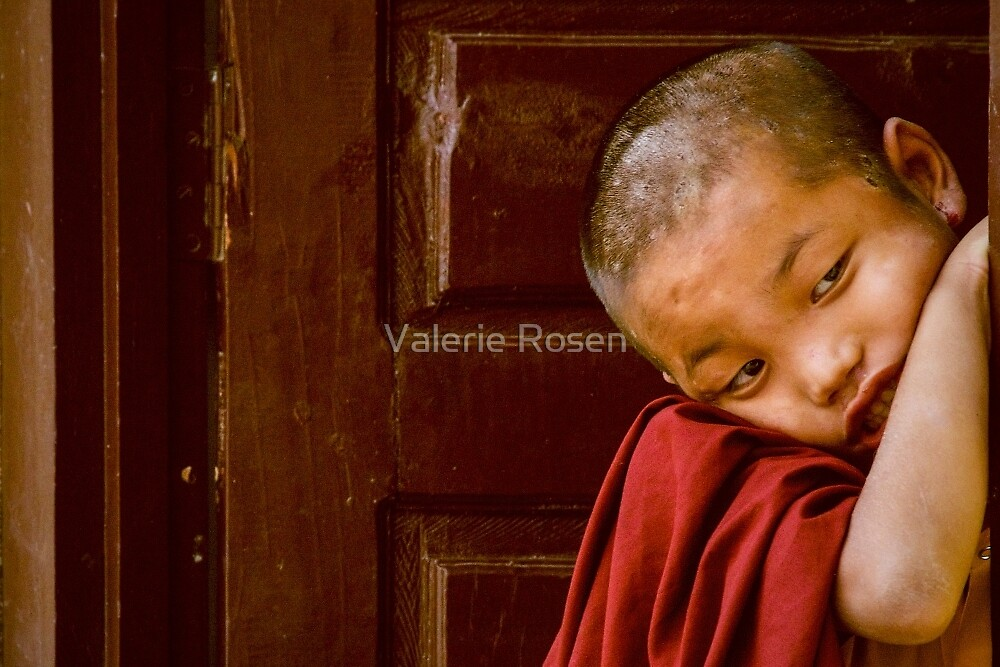 LIttle Monk by Valerie Rosen