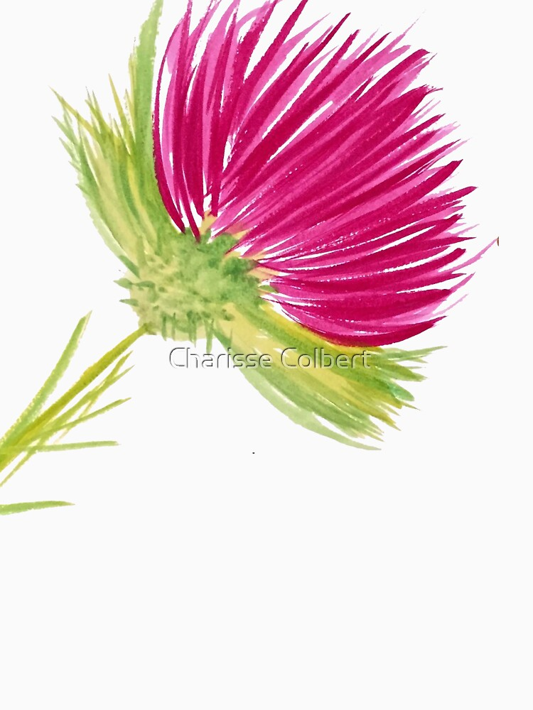 Brilliant Thistle by charissecolbert