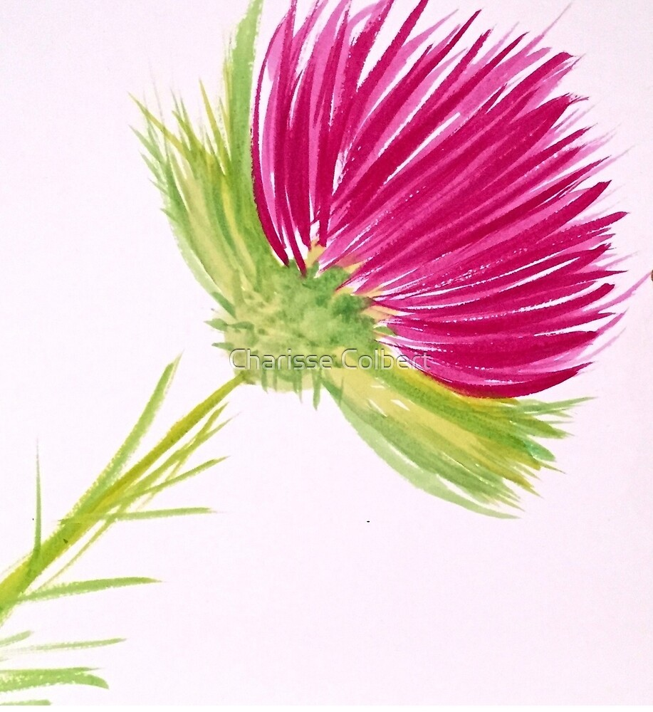 Brilliant Thistle by Charisse Colbert