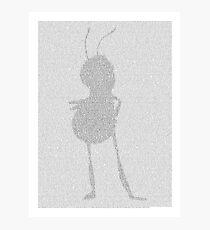 Barry Bee Benson - Bee Movie Photographic Print