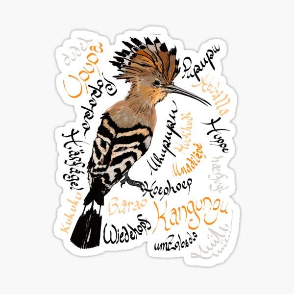 "Hoopoe: Upupa epops, ""hudhud"" Sticker"