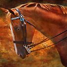 Red And Gold - Horse Photography by Michelle Wrighton