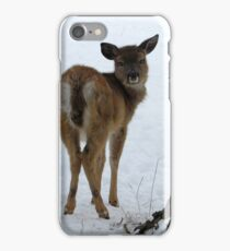 Youngster iPhone Case/Skin