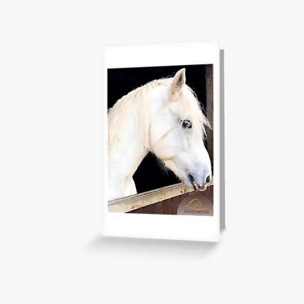 Billy Collection Greeting Card
