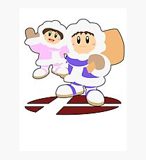 Ice Climbers- Super Smash Bros Melee Photographic Print