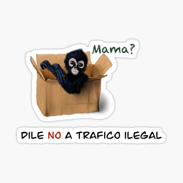Dile No a trafico ilegal mono Sticker