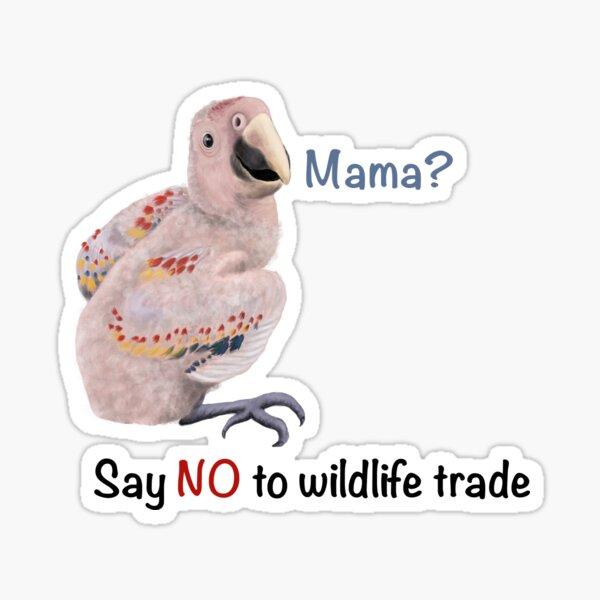 Say No to wildlife trade macaw Sticker