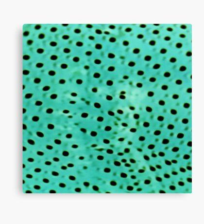 Polka mint Canvas Print