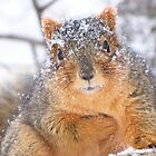 """""""Hello, My Name Is Snowflake""""  by lorilee"""