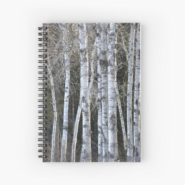 Aspen Spiral Notebook
