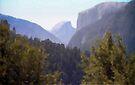 Yosemite - Valley View by John Schneider