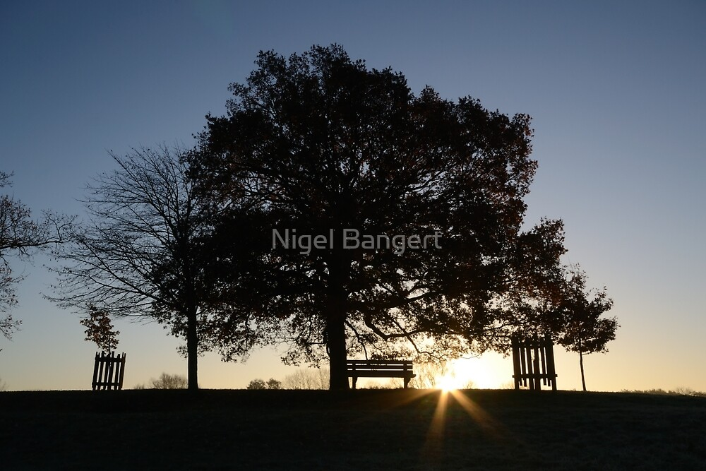 Sunrise by Nigel Bangert
