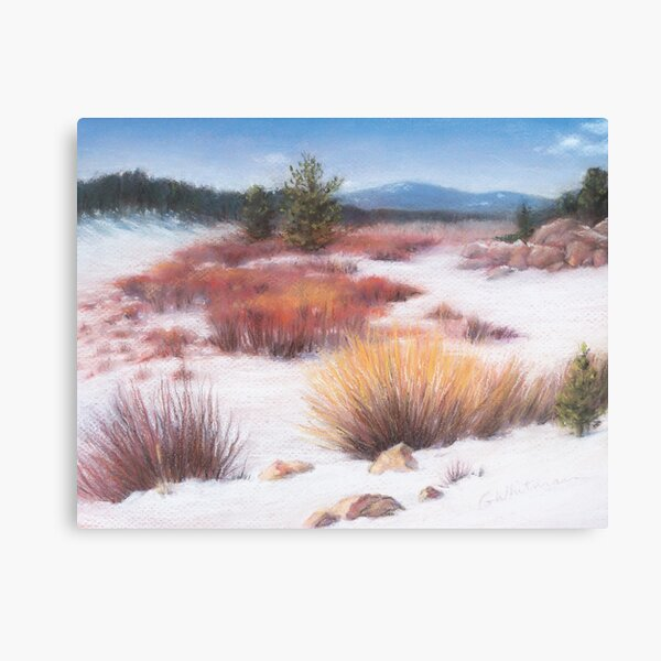 Almost Spring in Redfeather Canvas Print