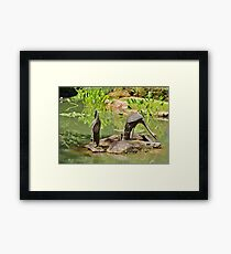 Two Iron Egrets Framed Print