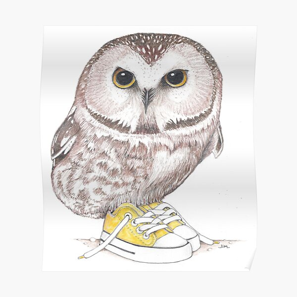 Saw-Whet owl in low tops Poster