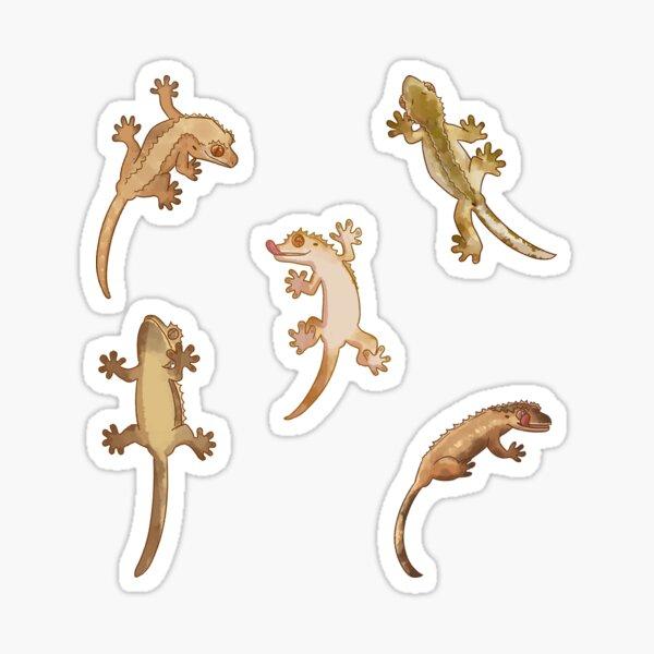 cute little crested geckos Sticker