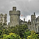 Arundel Castle, England by hans p olsen
