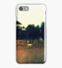 Highlands iPhone Case/Skin