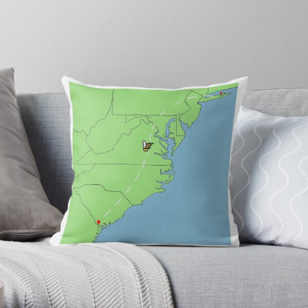 Hailey- for Cindy Throw Pillow