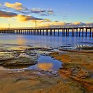 Golden Morning, Point Lonsdale by bevanimage