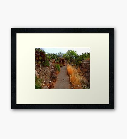 The Path of Life Framed Print